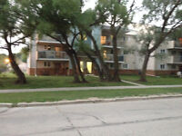 Very Near U of M and Pembina Hwy, Superstore 3 Storey Building