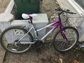 GOOD CONDITION ADULT BIKE