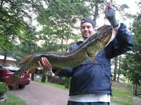Fishing and Cottage rentals