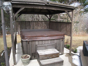 "Hydropool Serenity self cleaning hot tub ""moving must sell"""