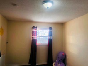 Room available for rent(female)