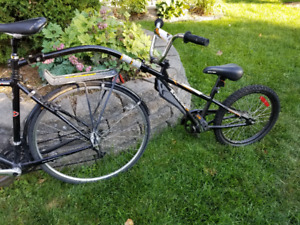 Supercycle Ride-along/Trail-a-bike