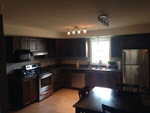 Roommate for a two bedroom furnished apartment