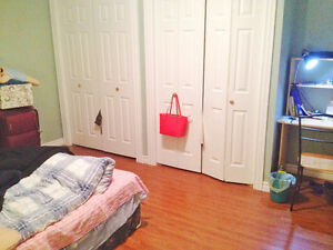 Quiet, furnished large bedroom looking for like-minded person