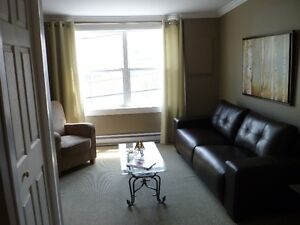 Furnished Two Bedroom Downtown Suite