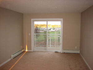 Spacious 2 bedroom apartment unit for rent in Spruce Grove