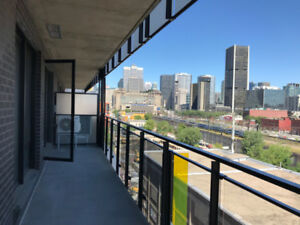 Beautiful New 3 1/2 Condo available for rent - Griffintown