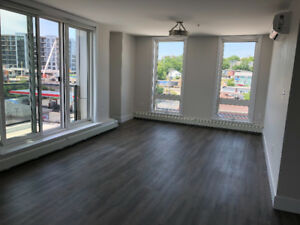 luxury 2bd+2bath available from Sep/8 mins drive to Downtown