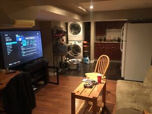 2 bedrooms Walk out basement for rent in Newmarket