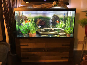 Complete 90 gallon tank and stand.