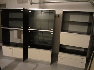 DeBoer's entertainment, display and storage unit