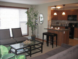 Near Chinook Mall -1 Bedroom Newly Renovated - In suite Laundry