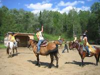 Camp d'équitation  été 2015