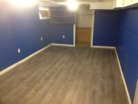 Looking for a room mate for the basement