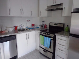 ALL INCLUSIVE, CLEAN, FURNISHED BACHELOR APT. IN LIBERTY VILLAGE