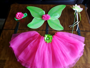 Fairy Butterfly Costume