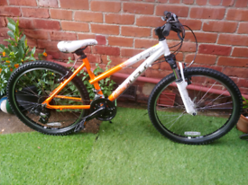 GT Scamp girls mountain bike for ages 9-12 lovely condition