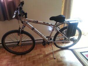 NEW PRICE  - NEW CONDITION!! EB1 Dyno 24-Volt Electric Bike
