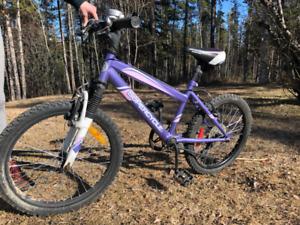 "Child's Super Cycle 20"" wheel size mountain bike"
