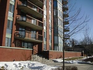 2 bedroom/1bath condo apartment in excellent condition Apr 1st.