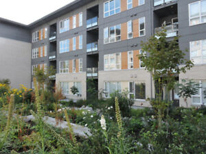 Brand new luxury apartment close to SFU. Fully furnished.