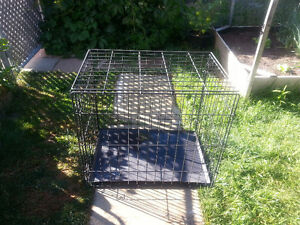 Dog Cage 30 L x 21 W x 26 H - Asking $ 25.00