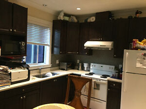 2 bedroom Bsmt suite near BGH