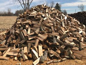 Bois de chauffage / firewood
