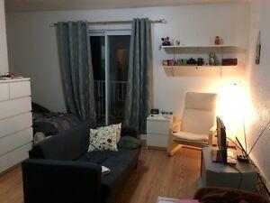 Appartement 1 1/2 à louer pour novembre