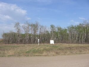 Acreage Development site for possible walk-out style home