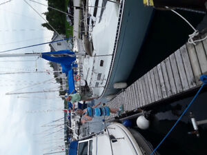 Sailboat pace ship 26