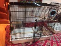Liberta Bird Cage
