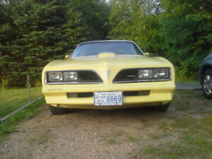 1977 Trans Am For Sale