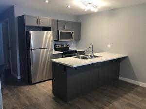 BRAND NEW! 2 Bedroom Basement Suite for Rent Now!