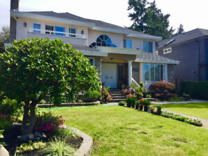 Large room in Kerrisdale for Summer