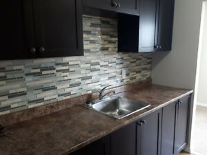 Pet Friendly 2 Bedroom In Oshawa