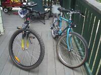 Family of Bikes