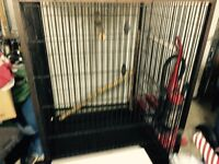 Steel cage 4x6 very clean !