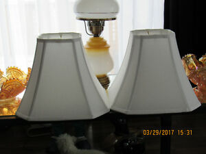 2 Beautiful Matching Lamp Shades.