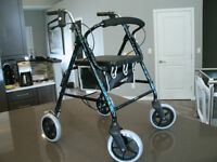 Lightweight Walker (BRAND NEW)