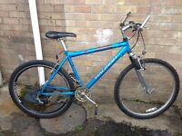 Raleigh men's mountain bike - good condition