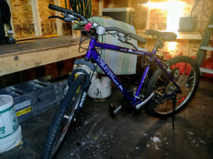 MINT Condition Mountain Bike - FREE Accessories!