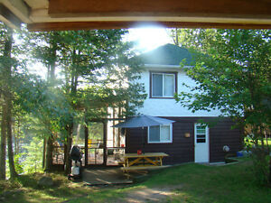 Large cottage August long weekend!  Last minute rental