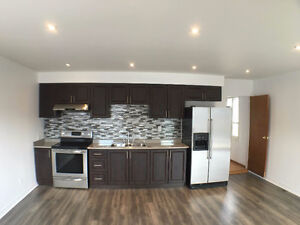 Spacious Newly Renovated 4br apt on Davenport & Dufferin