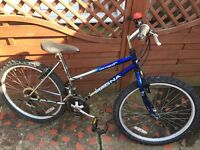 MAGNA OXYGEN 720 LADIES MOUNTAIN BIKE