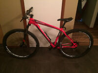 2014 Specialized Rockhopper 29""