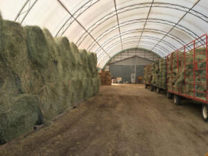2018 First Cut Horse Hay