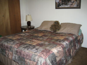 VALLEYVIEW:  Fully furnished basement bedroom-short term rental