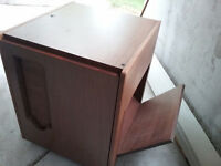 Sewing/craft cabinet