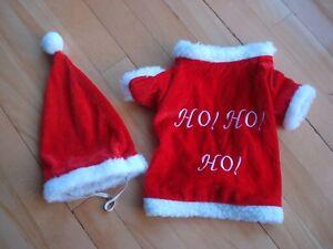 costume de Père de Noel pour chien